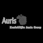 Auris-logo